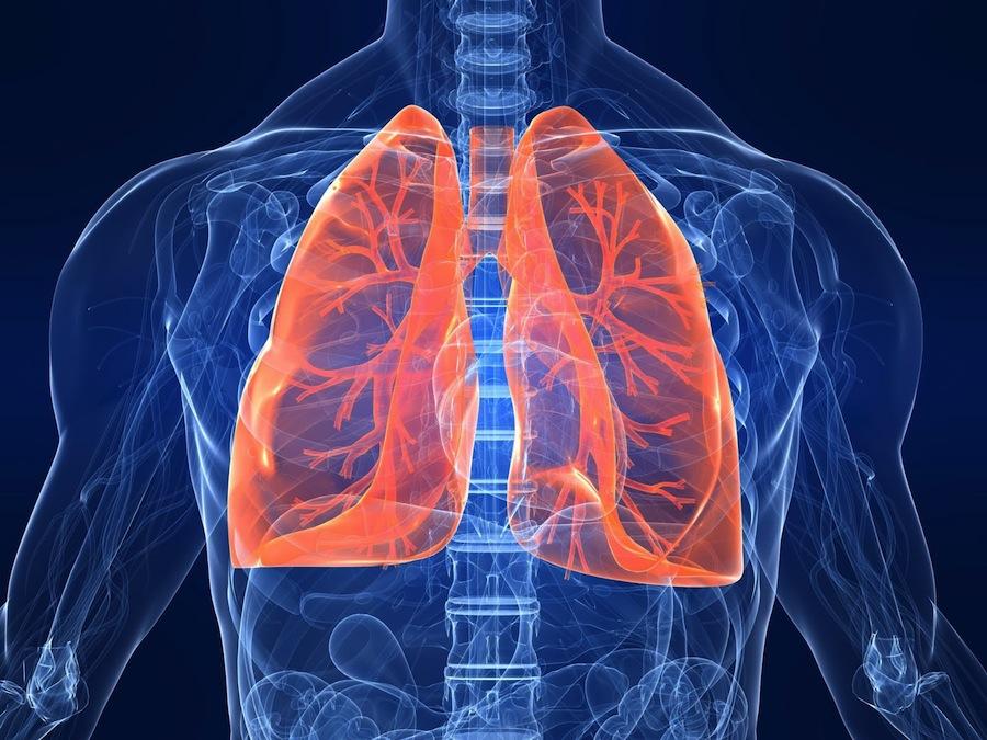 Бронхиальная астма, Аллергология и Иммунология